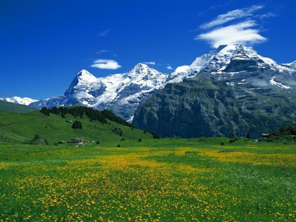 alpine-mountain